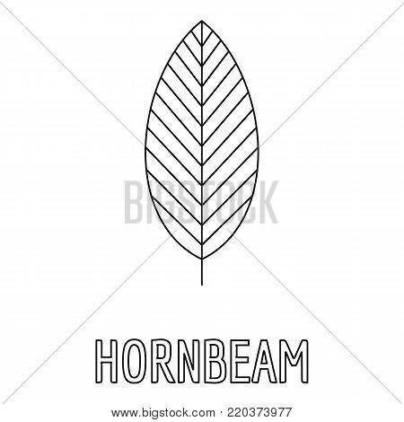 Hornbeam leaf icon. Outline illustration of hornbeam leaf vector icon for web