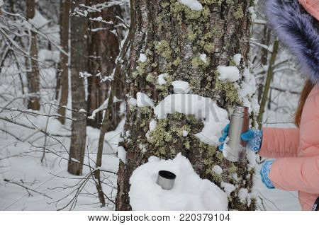 Woman is pouring a hot drink in mug from thermos. A pretty girl. Walk in the winter snow-covered forest, trees in the snow. enjoys the winter. a hot drink pours from the thermos. wears gloves