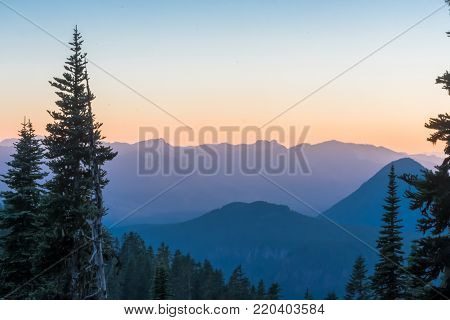 Blue Mountain Ridge at Sunset with Pine Trees