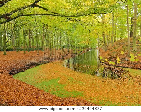 Autumn leaves and canal in park land at Clingendael, The Hague 2017