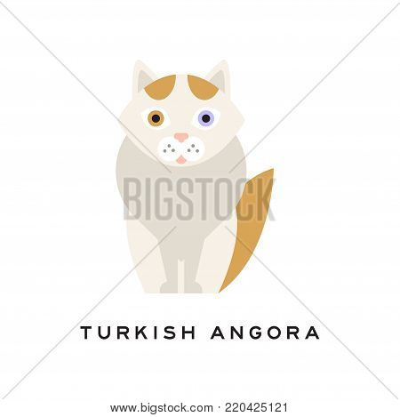 Turkish angora cat. Cartoon pet character. Domestic animal with white fur, red markings on head and tail, pink nose, one blue and one amber eye. Isolated flat vector design for zoo shop or vet clinic.