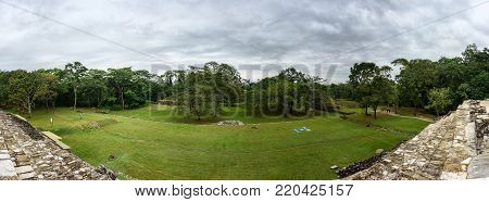 Vista of a green jungle behind a grass field in the Maya city state of Palenque