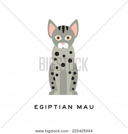 Cute egyptian mau cat. Medium-sized short-haired pet with brown eyes, gray fur and black spots on body. Cartoon character of purebred domestic animal in flat style. Isolated vector illustration.