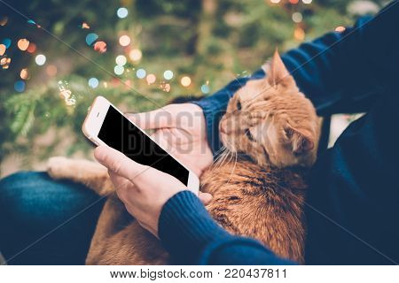 Young man relaxing at home with ginger cat and smartphone in his hand, cozy holiday evening, smartphone screen mock-up.