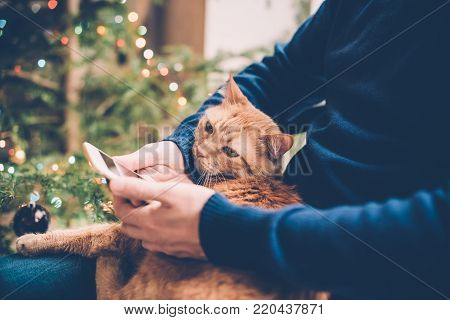 Young man relaxing at home with ginger cat and smartphone in his hand, cozy holiday warm hygge evening