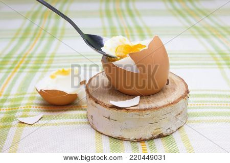 Boiled fresh smash broken egg for the breakfast on the wooden birch stand for eggs. Broken beige hen egg and pieces of shells, bright liquid orange yolk in the spoon
