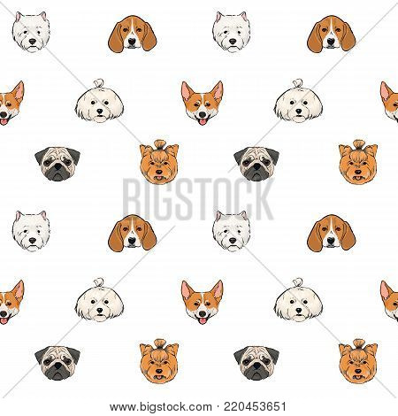 Seamless pattern with faces of dogs of various breeds hand drawn on white background. Cute small pet animals. Colorful vector illustration for textile print, backdrop, wallpaper, wrapping paper