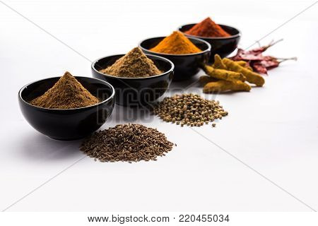 Indian colourful spices. Group photo of four basic Indian spices like raw red chilli, turmeric, coriander and cumin powder. selective focus