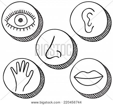 Hand drawn icons containing symbols for five senses - sight, hearing, smell, touch and taste