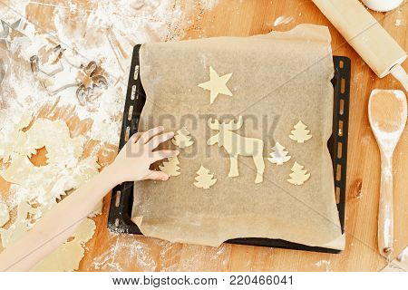 Unrecognizable child puts ready hand made cookies on baking tray, helps mother with preparation for Christmas. Butter Christmas cookies. Tasty ginger bread