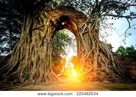 The Miracle  Of Gate Way To The Passage Of Time  With Arch Is Surrounded By Bodhi Tree In Wat Phra N