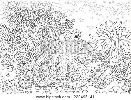 A spotted octopus, an actinia and corals on a tropical reef, a black and white vector illustration in cartoon style for a coloring book
