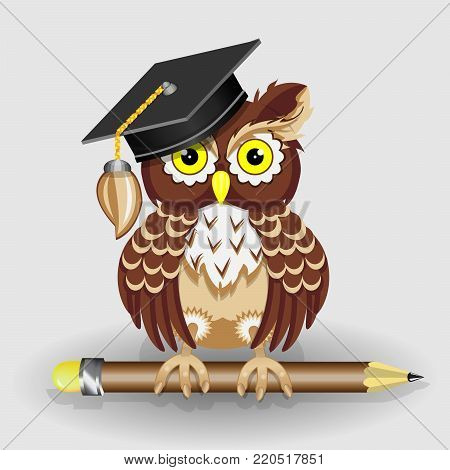 Scientist clever owl with pencil and in cap vector illustration