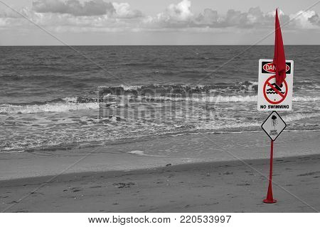 Red warning flag on beach with Danger No Swimming sign and jellyfish image. Highlighted colored flagpole against greyscale tropical costal landscape
