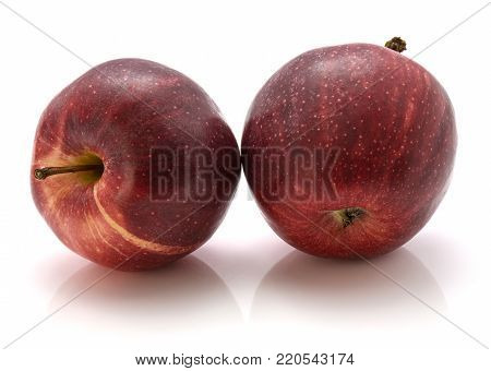 Two fresh Gala apples isolated on white background