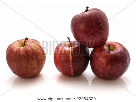 Four whole Gala apples isolated on white background