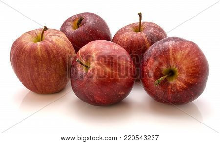 Group of five whole Gala apples isolated on white background