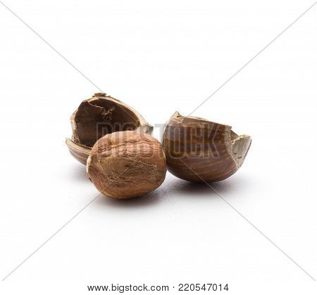 One shelled hazelnut with hollow shell halves isolated on white background