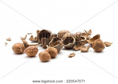 Hazelnut hollow shells stack with separated five shelled nuts isolated on white background
