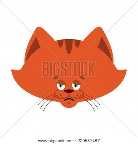 Cat sad emoji. Pet sorrowful emotions. kitty dull. Vector illustration