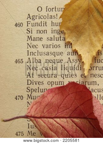 Ancient Poem 1