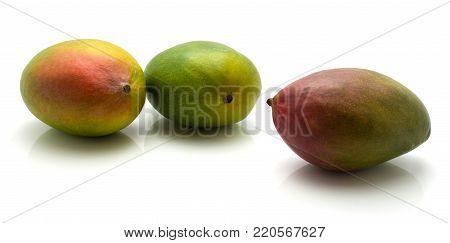 Mango isolated on white background three common