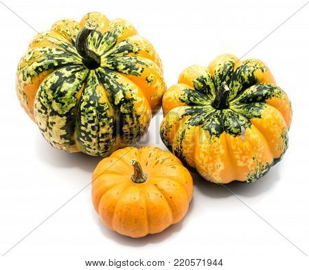 Three whole colorful pumpkin (two spotty green yellow and one yellow) isolated on white background