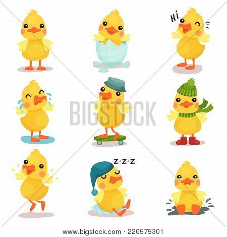 Cute little yellow duck chick characters set, duckling in different poses and situations cartoon vector Illustrations on a white background