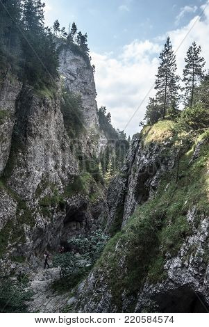 Prosiecka dolina valley and ravine in Chocske vrchy mountains in Slovakia with rocks, hiking trail and trees during summer day with blue sky and clouds