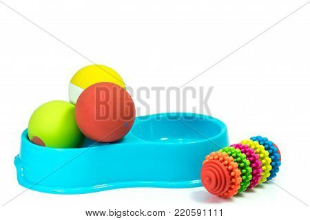 Pet supplies set about bowl, rubber toys for dog or cat on white background