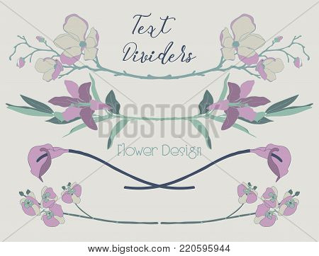 Delicate Colorful Hand Drawn Floral Text Dividers, Line Borders with Flowers. Decorative Outlined Vector Illustration. Flower Design Elements. Lily Flower, Cherry Blossom, Calla, Orchid