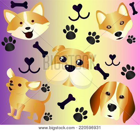 Collection of pets - cute cartoon dogs and dog treats with dog tracks from the paws. Red dogs are a cute little dog chihuahua, funny welsh corgi. A beagle hunting dog, close-up. Thick french dog