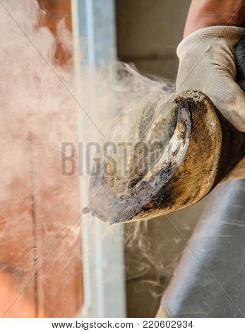 upkeep and preparation of new horseshoes for horses