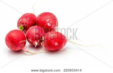 Five bulbs of red radish isolated on white background