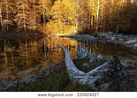 View of Arrenes or Moutsalia alpine lake on Mt Grammos in Greece during autumn