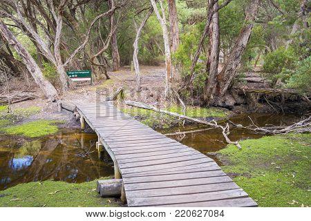Wooden footbridge over creek into Refuge Cove Campground, Wilsons Promontory National Park, Australia