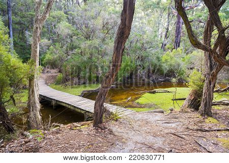 Wooden footbridge over creek into Refuge Cove Campsite, Wilsons Promontory National Park, Australia poster