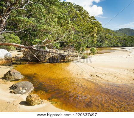 Tannin river of Sealers Cove, Wilsons Promontory National Park, Victoria, Australia