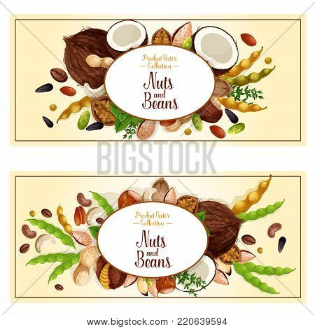 Nuts and fruit seeds or beans banners. Vector set of walnut, peanut or coconut and hazelnut, pistachio or almond nut legume bean pod, pumpkin or sunflower seeds and macadamia or filbert nut