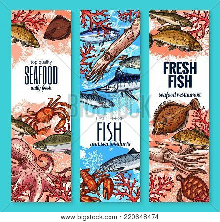 Seafood and fresh fish product banners of marlin, octopus or squid and bream, anchovy or trout and fisherman catch flounder or shrimp and lobster crab. Vector sketch design for sea food market