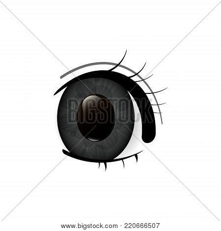 Eye. Human eyes closeup. Beautiful big eyes. Vector illustration