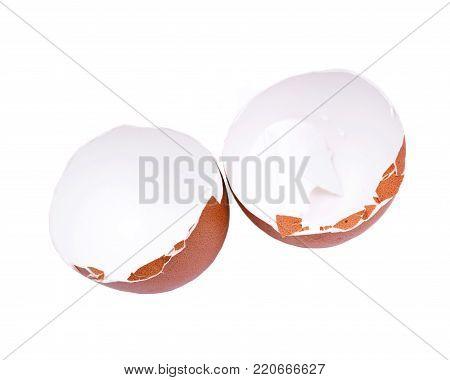 Unwashed fresh organic gmo and soy free pasture raised chicken eggshells isolated on white background