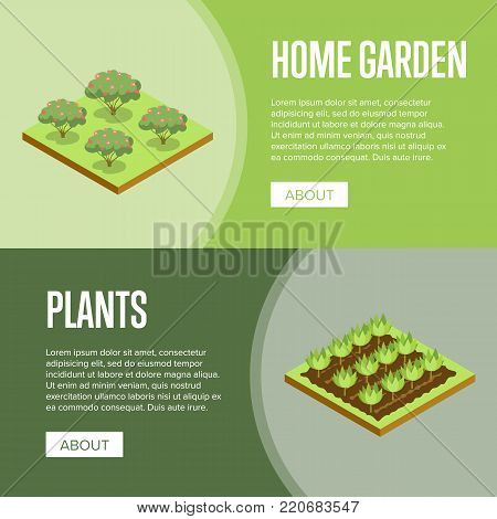 Home garden and decorative plants isometric posters. Public parkland zone landscape design, outdoor summer park recreation vector illustration. Natural green grass and bushes 3d elements.