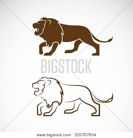 Vector of a male lion design on white background. Wild Animals. Easy editable layered vector illustration.