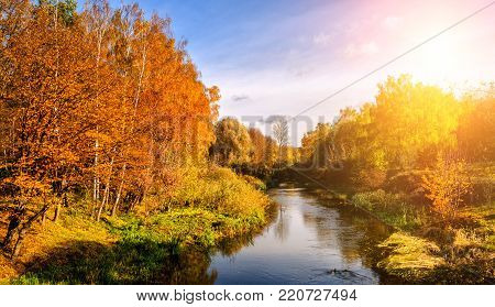 Wonderful  landscape with autumn trees in forest, over the river. colorful  foliage onthe perfect sky on the background, gloving in snlight. soft light effect
