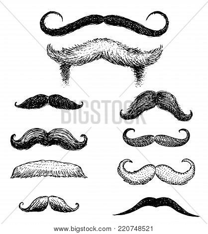 Set of mustache and funny beard of men, hipster and retro barber or hairdresser on transparent background. engraved hand drawn in old sketch, vintage style for packaging and signage