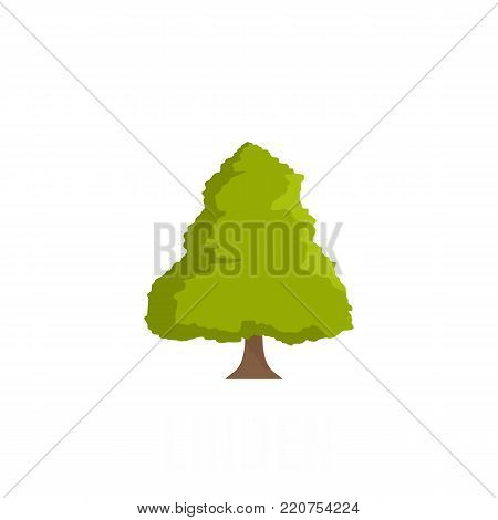 Linden tree icon. Flat illustration of linden tree vector icon isolated on white background