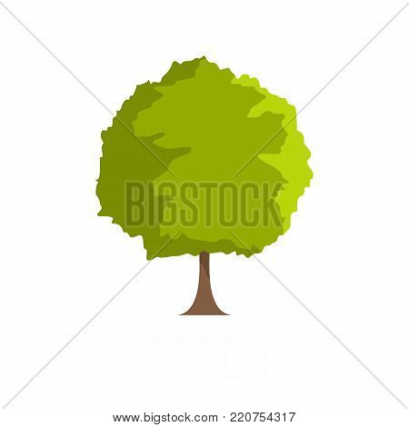 Beech tree icon. Flat illustration of beech tree vector icon isolated on white background