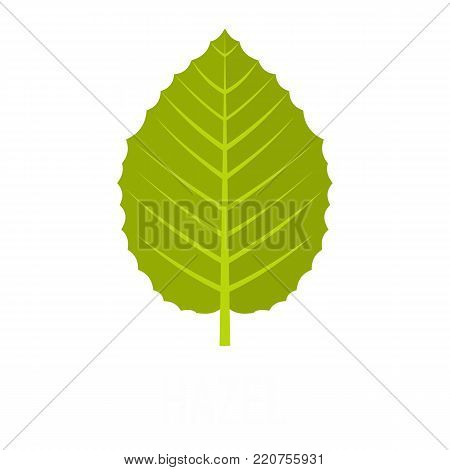 Hazel leaf icon. Flat illustration of hazel leaf vector icon isolated on white background
