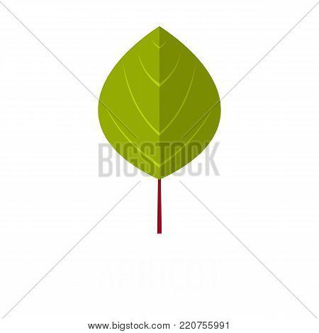 Apricot leaf icon. Flat illustration of apricot leaf vector icon isolated on white background
